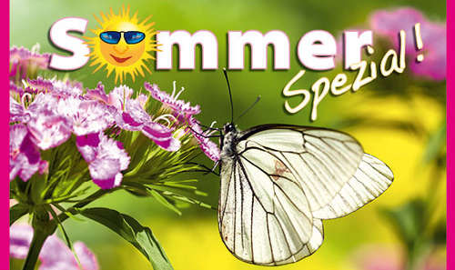 Sommer Spezial 2016 als PDF-Download